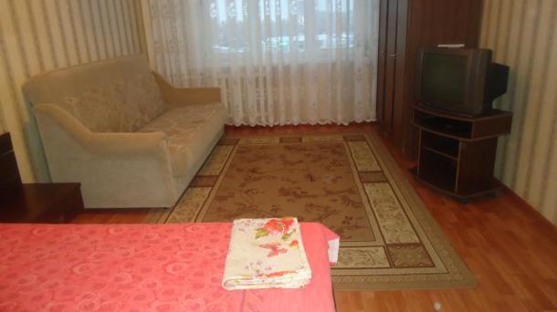 1 комнатная квартира у Ледового Дворца