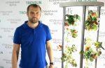 Выращивание клубники дома круглый год – «Захотелось клубнички»: южноуралец придумал, как выращивать дома ягоды круглый год | Екабу.ру